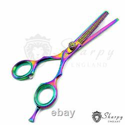 Barber Salon Hair Professional Cutting Thinning Scissors Shears Hairdressing New