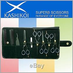 Professional Salon Hair Cutting Thinning Scissors & Shears Set Black Color
