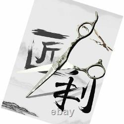 5.5 Salon Professionnel De Coiffure Ciseaux Set Cutting Hair Ciseaux Barber
