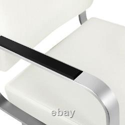 Professional Classic White Barber Chair Hydraulic Salon Spa Beauty Hair Stylist